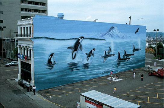 graffiti wallpaper for walls australia